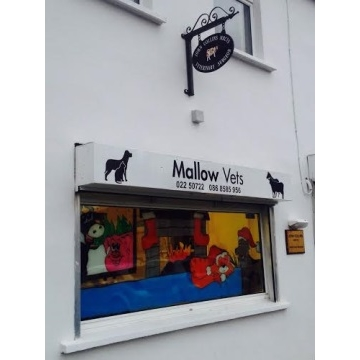 Mallow Vets, Vet Surgeon in Mallow